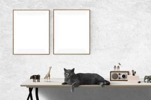 Domek jednorodzinny – kwestia projektu
